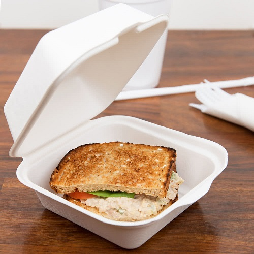 Biodegradable Hot Food Boxes