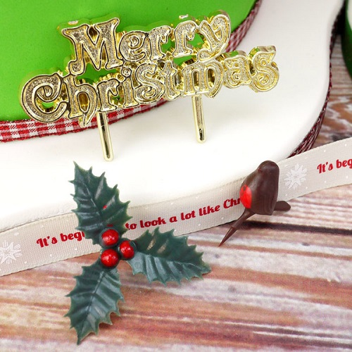 Christmas Cake Decorations & Accessories